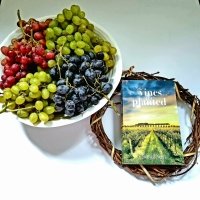 The Vines We Planted by Joanell Serra #bookreview #tarheelreader @joanell @widopublishing #thevinesweplanted