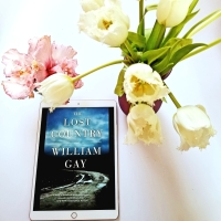 The Lost Country by William Gay #bookreview #tarheelreader #williamgay @dzancbooks #thelostcountry