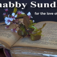 Shabby Sunday 5: I Can Do It Myself by Emily Perl Kingsley (1980) #shabbysunday #icandoitmyself #booktag