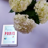 Goodbye, Paris by Anstey Harris #bookreview #tarheelreader #goodbyeparisbook