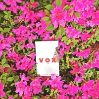 Vox by Christine Dalcher #bookreview #tarheelreader @cvdalcher @berkleypub #voxbook