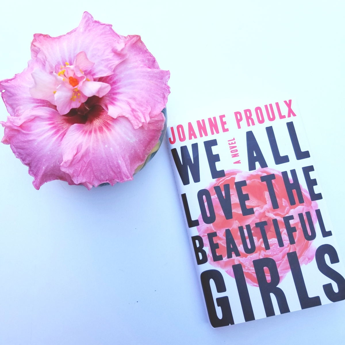 We All Love the Beautiful Girls by Joanne Proulx #bookreview #tarheelreader @joannevproulx @grandcentralpub #wealllovethebeautifulgirls #pubday #bookgiveaway