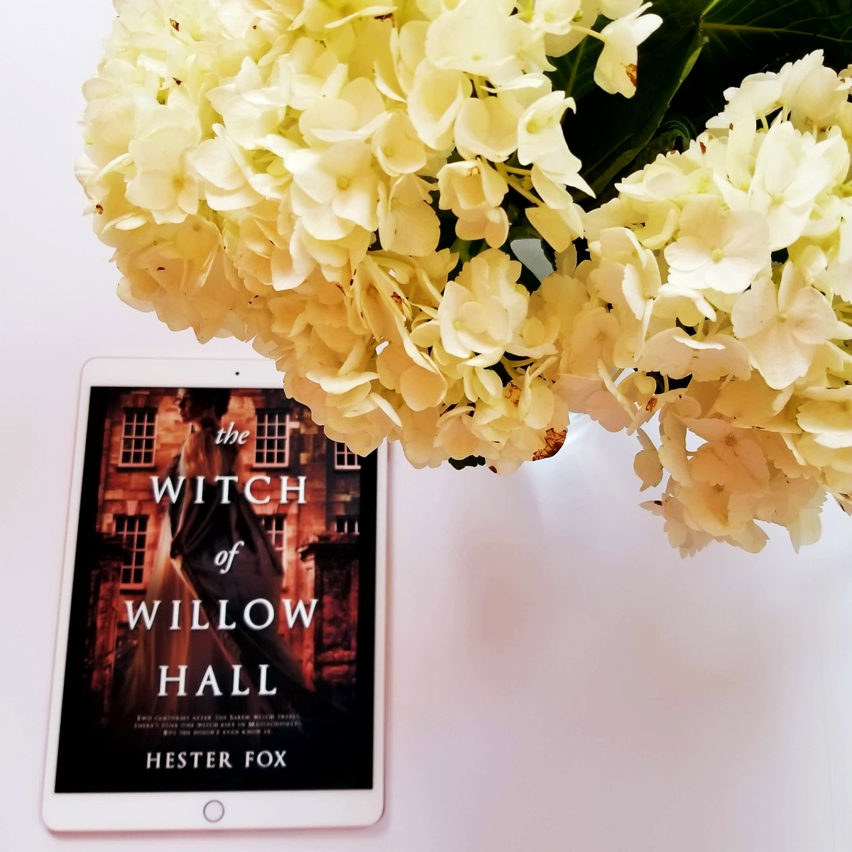 I can't wait for ... (Can't-Wait Wednesday/Waiting on Wednesday) #cantwaitwednesday #tarheelreader @hesterbfox @harlequinbooks #thewitchofwillowhall
