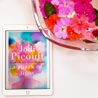 A Spark of Light by Jodi Picoult #bookreview #tarheelreader #thrspark @jodipicoult @randomhouse #ballantinebooks #asparkoflight