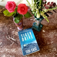 Tiger Drive by Teri Case #bookreview #tarheelreader #thrtigerdrive @tericase_author #tigerdrive
