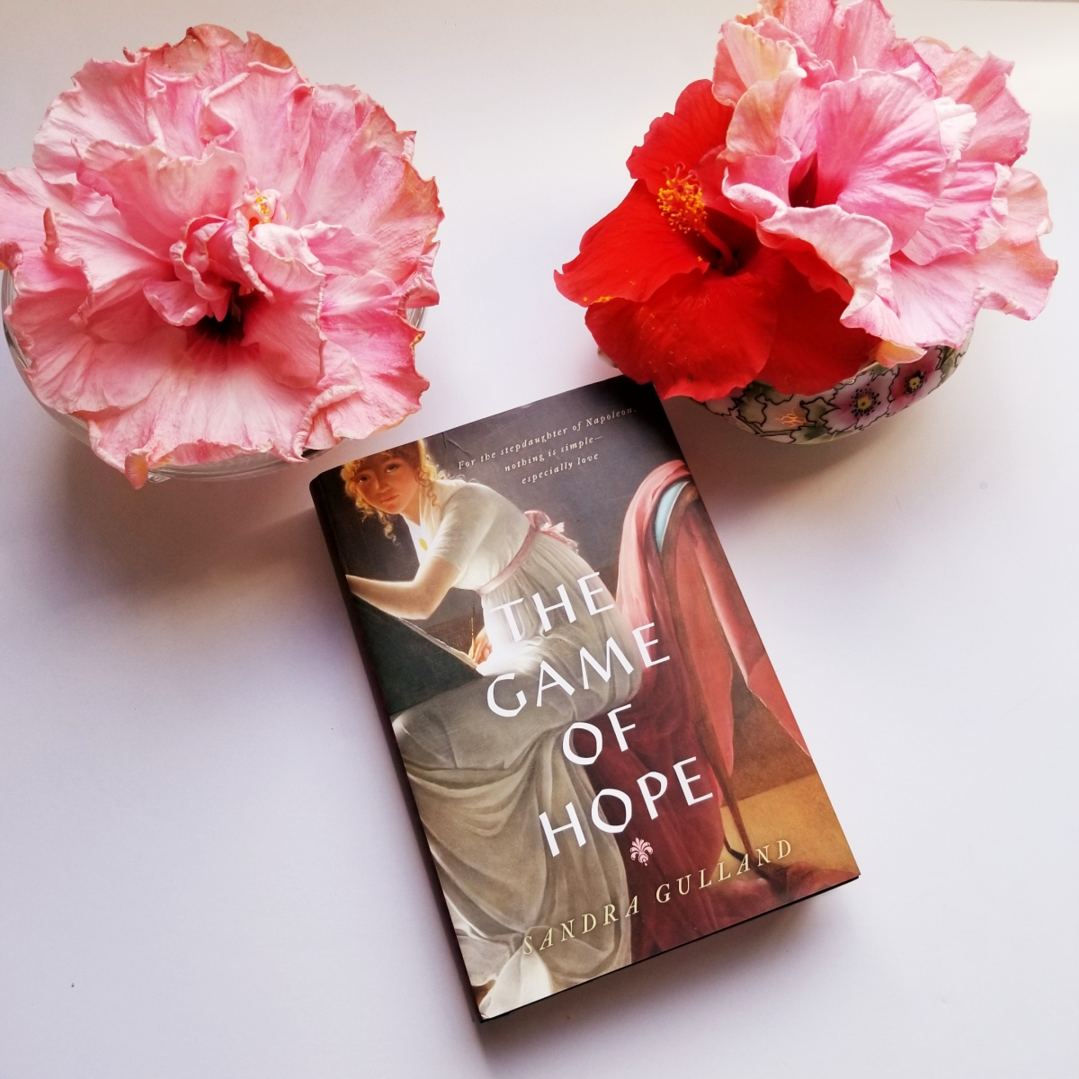 The Game of Hope by Sandra Gulland #bookreview #tarheelreader #thrgamehope @hfvbt @Sandra_Gulland  @VikingBooks  #thegameofhope #blogtour #HFVBTBlogTours #giveaway
