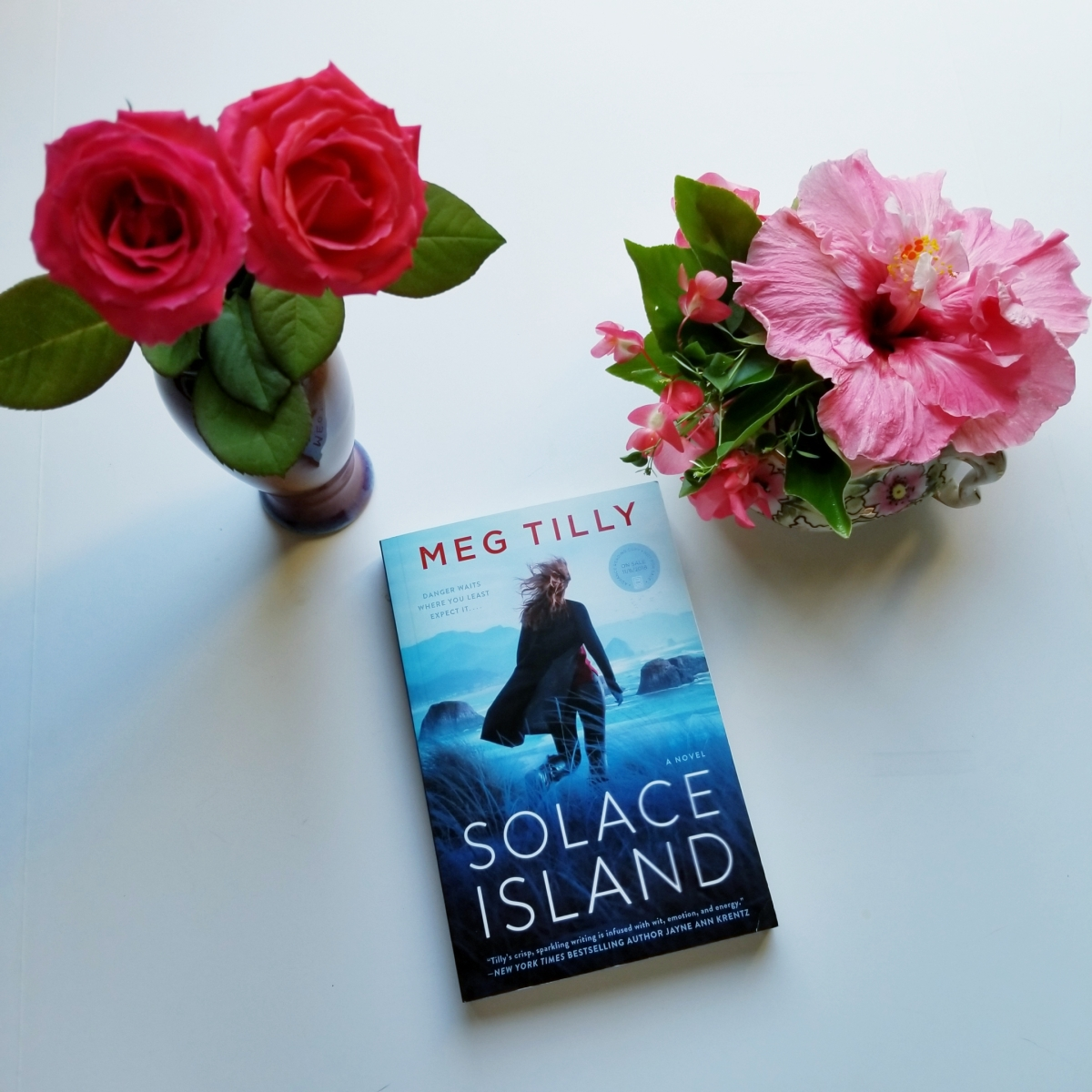 Solace Island by Meg Tilley #bookreview #tarheelreader #thrsolace @meggamonstah @berkleypub #solaceisland #6bookbestiessolaceisland