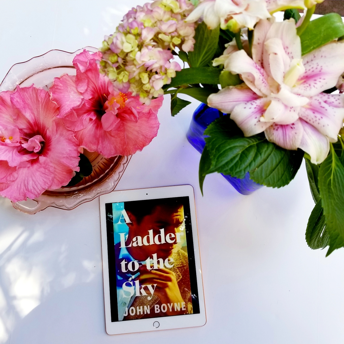 A Ladder to the Sky by John Boyne #bookreview #tarheelreader #thrladder @john_boyne @crownpublishing @hogarthbooks #aladdertothesky