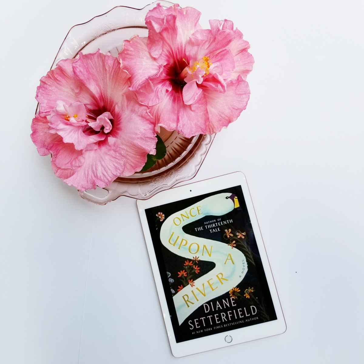 Once Upon a River by Diane Setterfield #bookreview #tarheelreader #thrthruponriver @dianesetterfie1 @atriabooks #onceuponariver