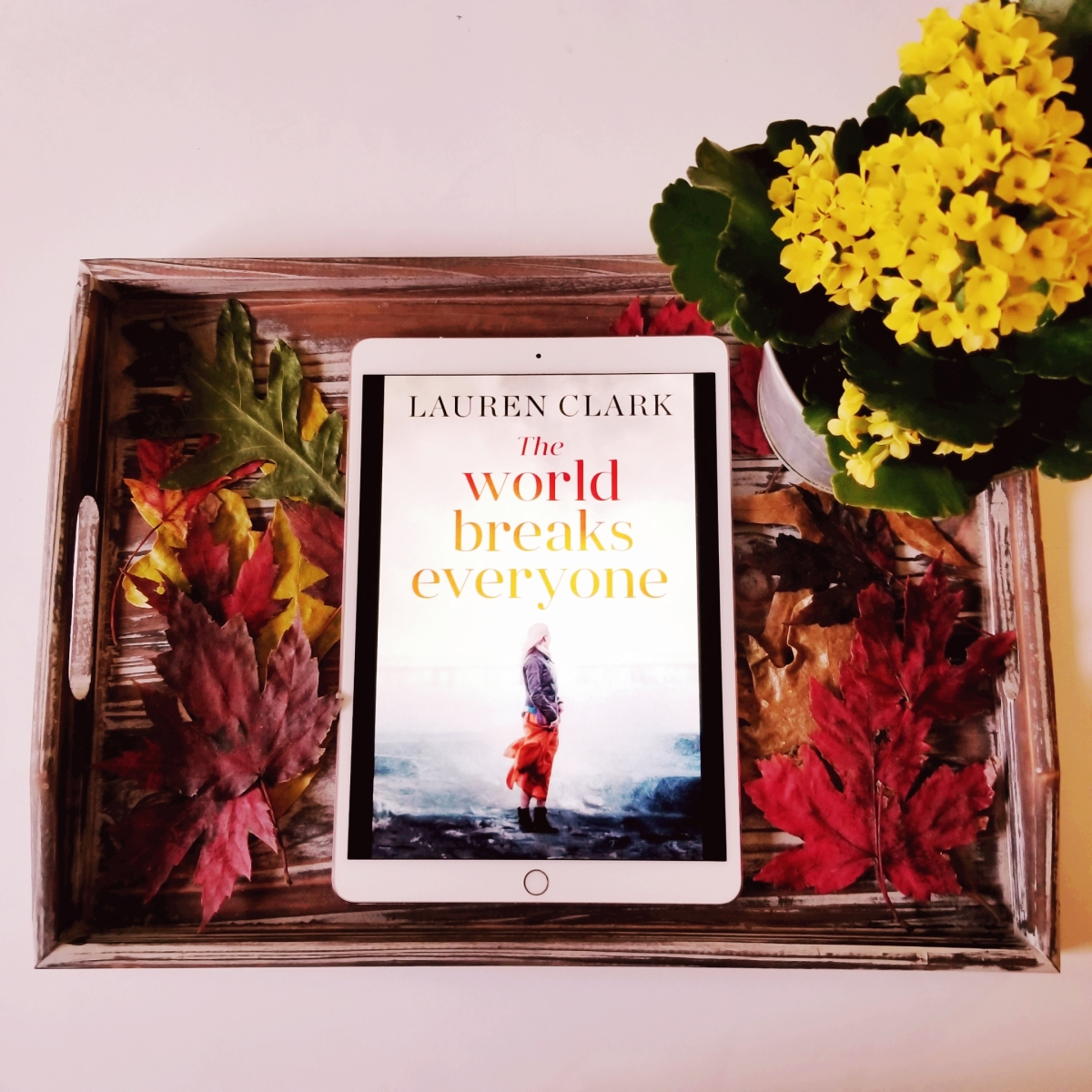 The World Breaks Everyone by Lauren Clark #bookreview #tarheelreader #thrTWBE @lauramcneillbks #camelliapress #theworldbreakseveryone #6bookbestiesworldbreakseveryone #6bookbestieapproved