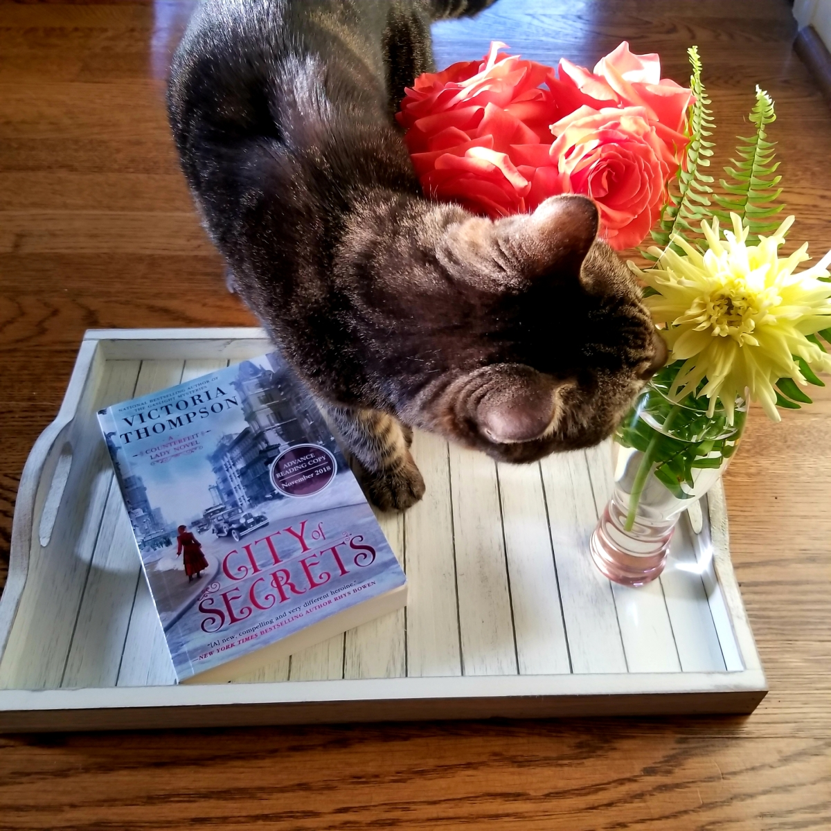 City of Secrets by Victoria Thompson #bookreview #tarheelreader #thrcitysecrets @gaslightvt @berkleypub #cityofsecrets #6bookbestiescityofsecrets #6bookbestieapproved