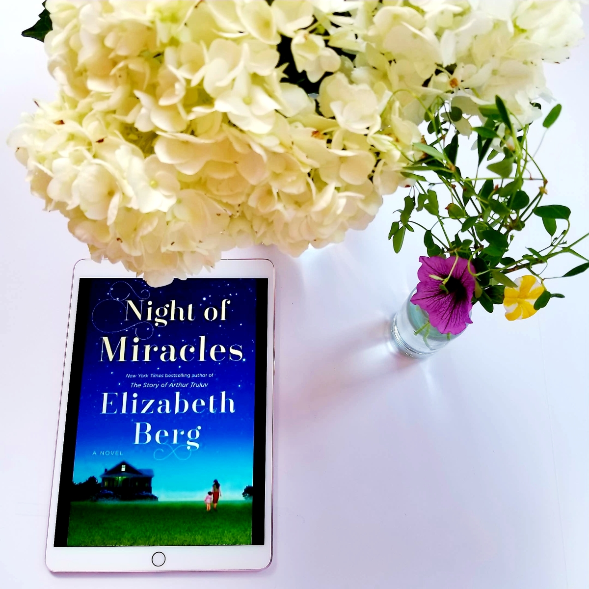 Night of Miracles by Elizabeth Berg #bookreview #tarheelreader #thrnofmir #elizabethberg @randomhouse #nightofmiracles