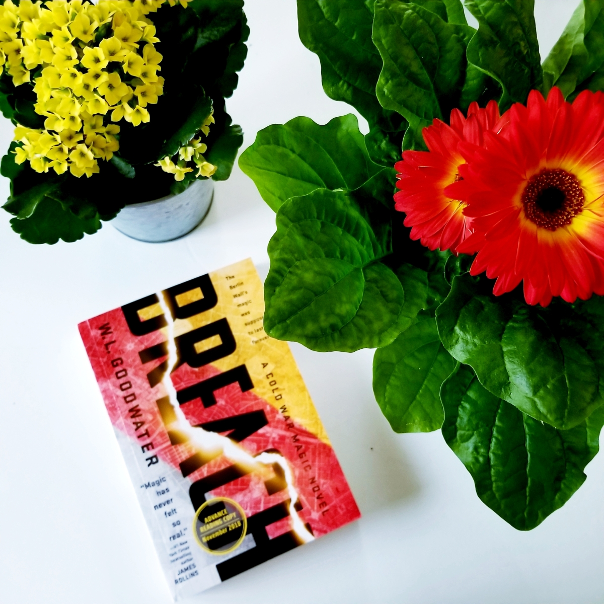 Breach by W.L. Goodwater #bookreview #tarheelreader #thrbreach @wlgoodwater @berkleypub @acerocbooks #breachbook #breach #6bookbestiesbreach #6bookbestieapproved
