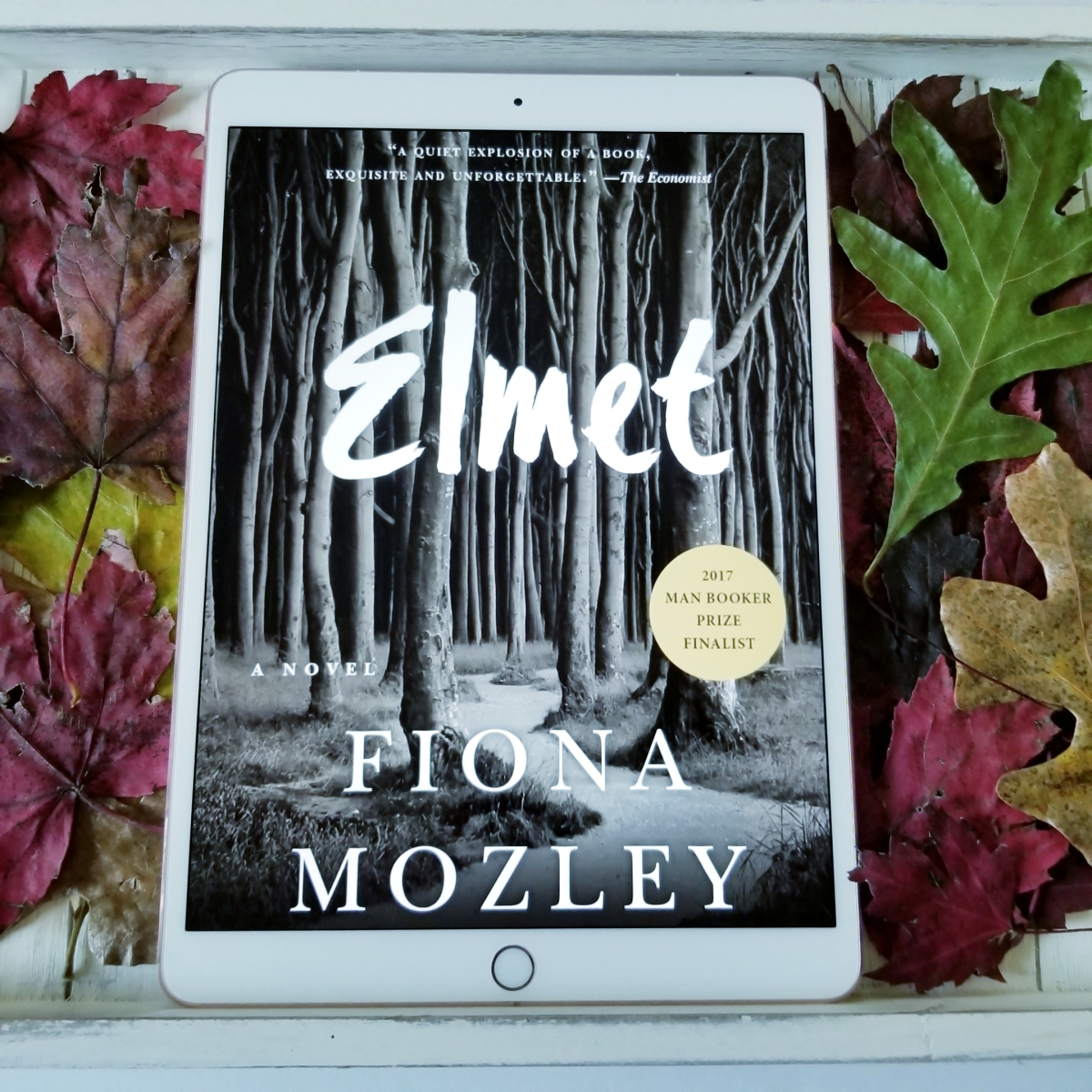 Elmet by Fiona Mozley #bookreview #tarheelreader #threlmet @fjmoz @algonquinbooks #elmet #buddyread #bibliobeth #thfavorites