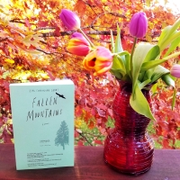 First Line Fridays: Fallen Mountains by Kimi Cunningham Grant #firstlinefridays #tarheelreader #thrfallenmountains @kimicgrant @amberjackpub #fallenmountains