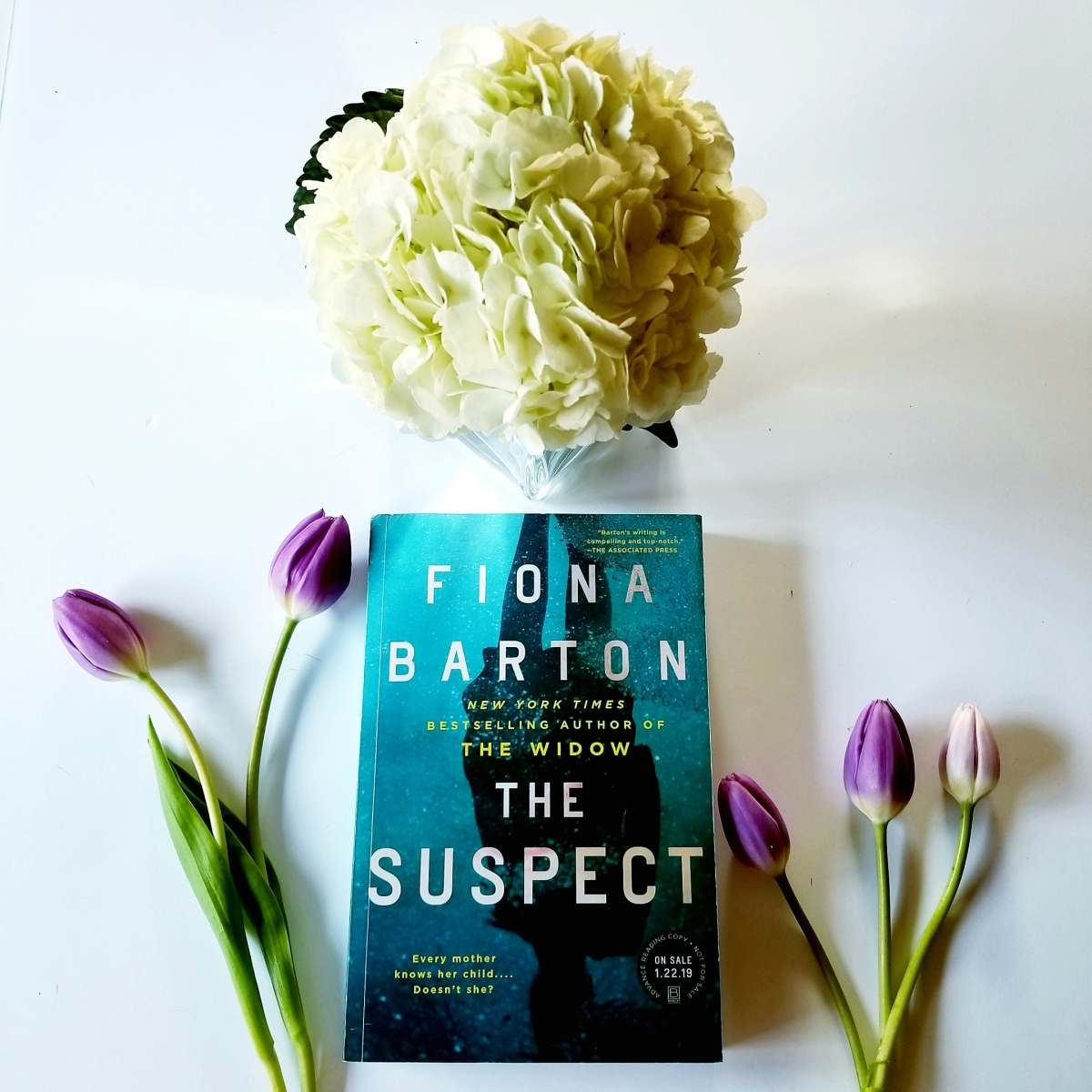 The Suspect by Fiona Barton #bookreview #tarheelreader #thrthesuspect @figbarton @berkleypub #thesuspect #bookbestiessuspect