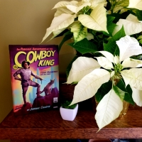 The Perilous Adventures of the Cowboy King by Jerome Charyn #bookreview #tarheelreader #thrcowboyking @jeromecharyn @liverightpub @cowboykingtr #bookgiveaway