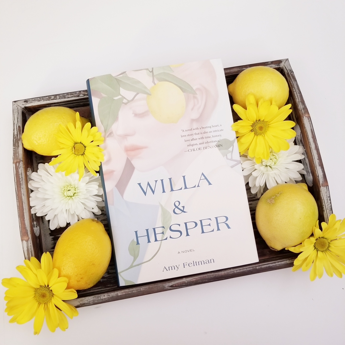 Willa & Hesper by Amy Feltman #bookreview #tarheelreader #thrwilla @amy_feltman @grandcentralpub #willaandhesper #bookgiveaway
