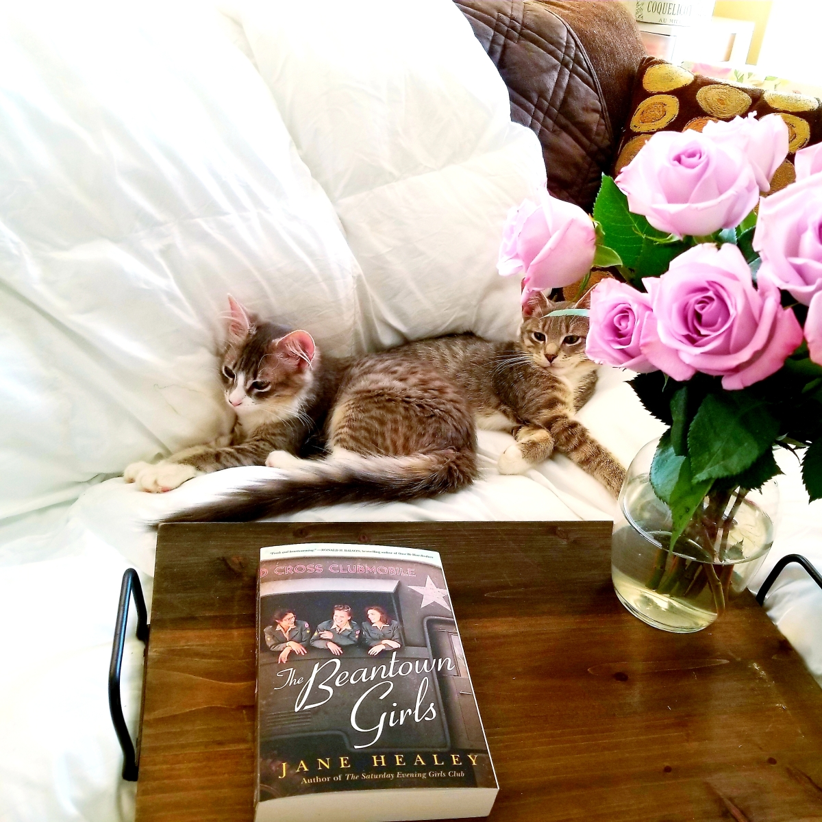 The Beantown Girls by Jane Healey #bookreview #tarheelreader #thrbeantown @healeyjane @amazonpub @annmarienieves #thebeantowngirls