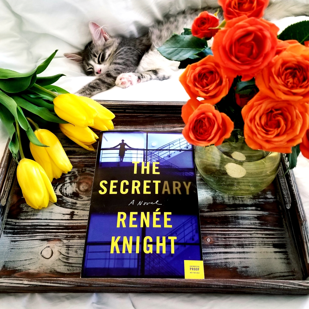 The Secretary by Renee Knight #bookreview #tarheelreader #thrthesecretary #reneeknight @harperbooks #thesecretary