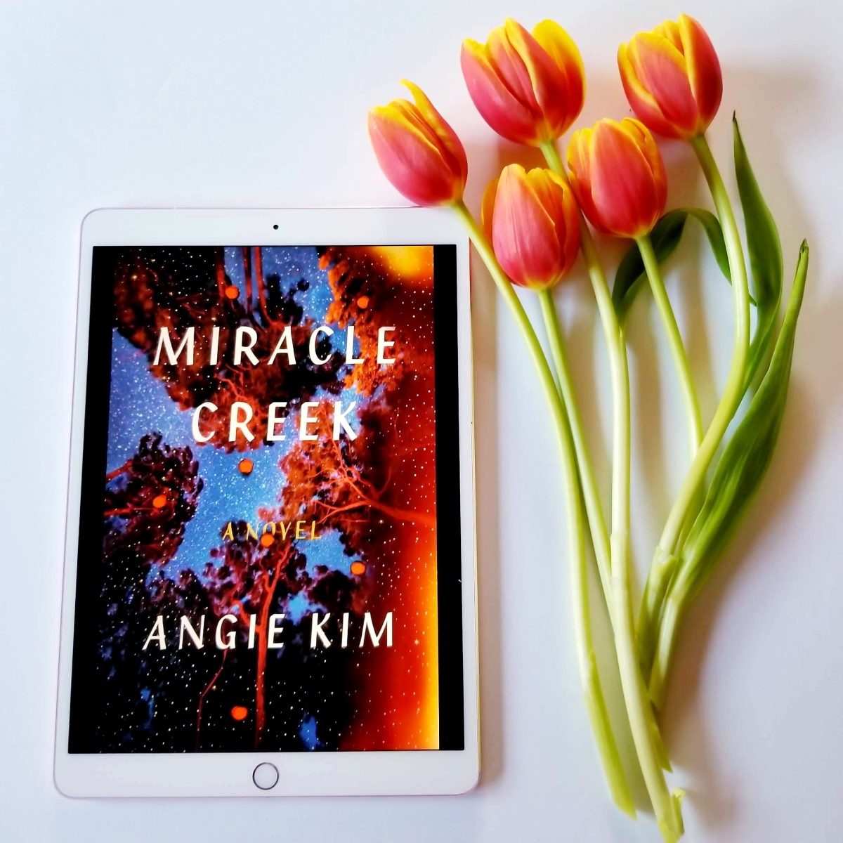 Miracle Creek by Angie Kim #bookreview #tarheelreader #thrmiraclecreek @angiekimwriter @fsgbooks #miraclecreek