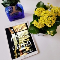 The Liar's Child by Carla Buckley #bookreview #tarheelreader #thrliarschild @carlabuckley @randomhouse #ballantinebooks #theliarschild