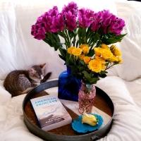 American Princess by Stephanie Marie Thornton #bookreview #tarheelreader #thramericanprincess @stephmthornton @berkleypub #americanprincess #blogtour #bookgiveaway