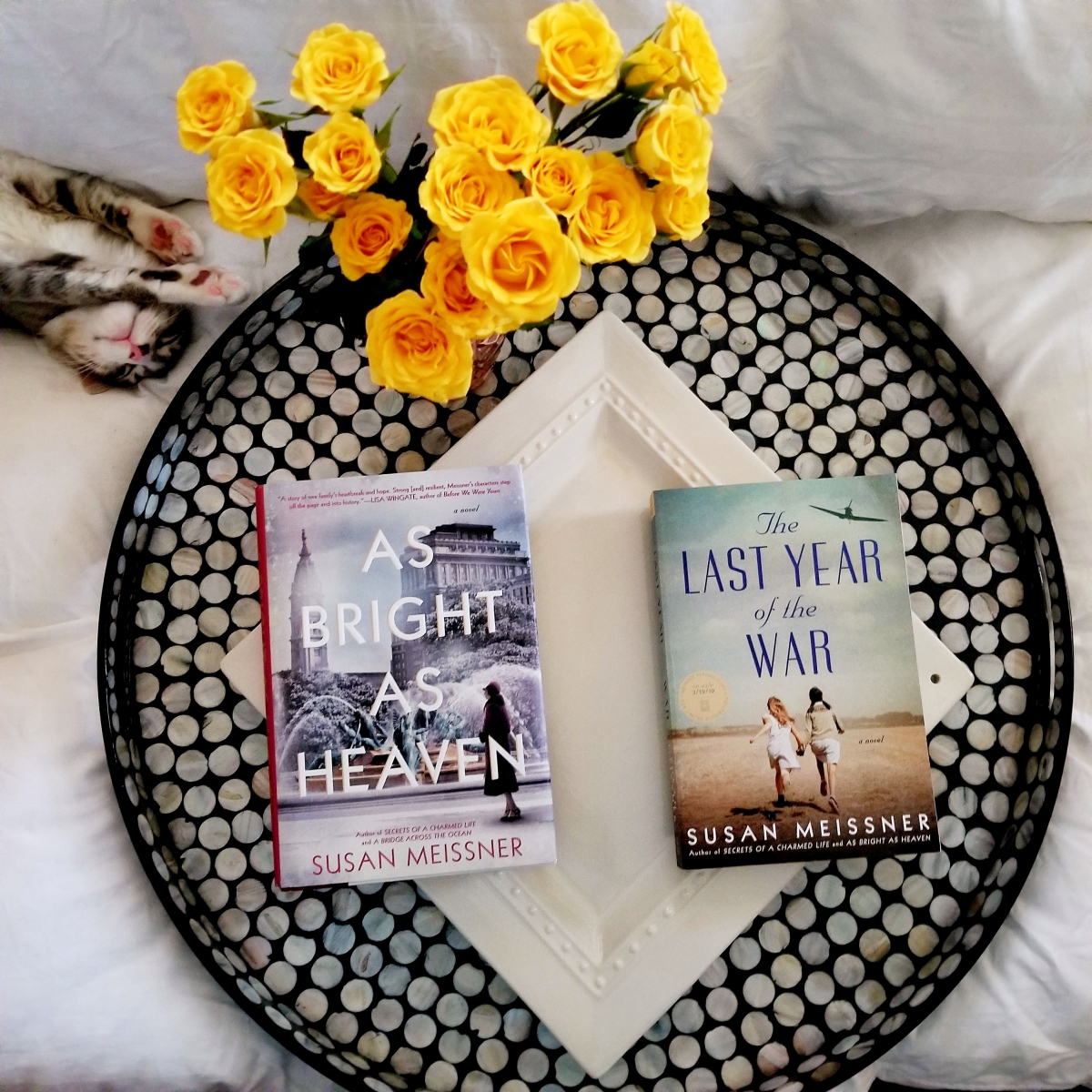 The Last Year of the War by Susan Meissner #bookreview #tarheelreader #thrthelastyear @susanmeissner @berkleypub #thelastyearofthewar #blogtour #bookgiveaway
