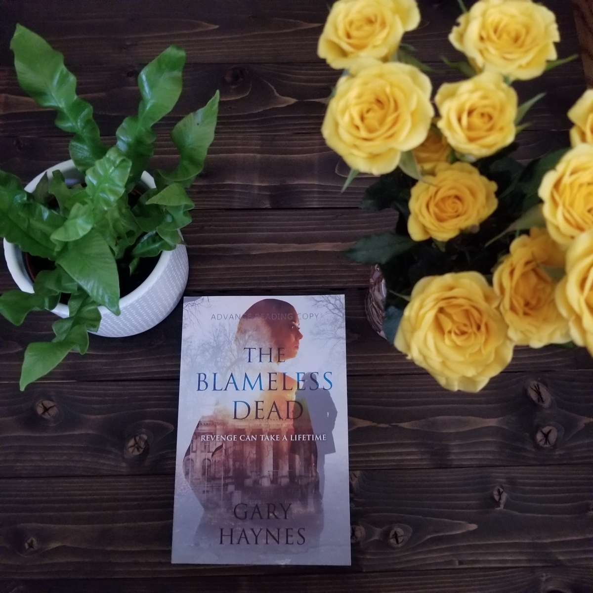 The Blameless Dead by Gary Haynes #bookreview #tarheelreader #thrblameless @garyhaynesnovel @endeavourquill #theblamelessdead