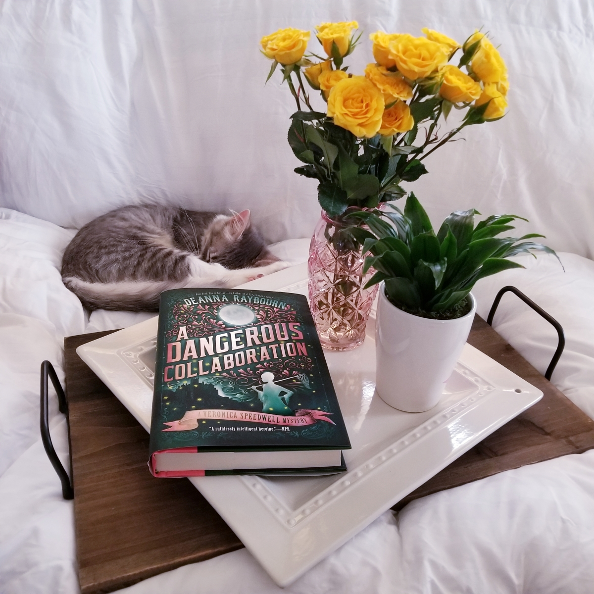 A Dangerous Collaboration by Deanna Raybourn #bookreview #tarheelreader #thrdangerous @deannaraybourn @berkleypub #adangerouscollaboration