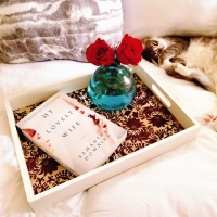 My Lovely Wife by Samantha Downing #bookreview #tarheelreader #thrmylovelywife @smariedowning @berkleypub #mylovelywife #bookbestiesmylovelywife