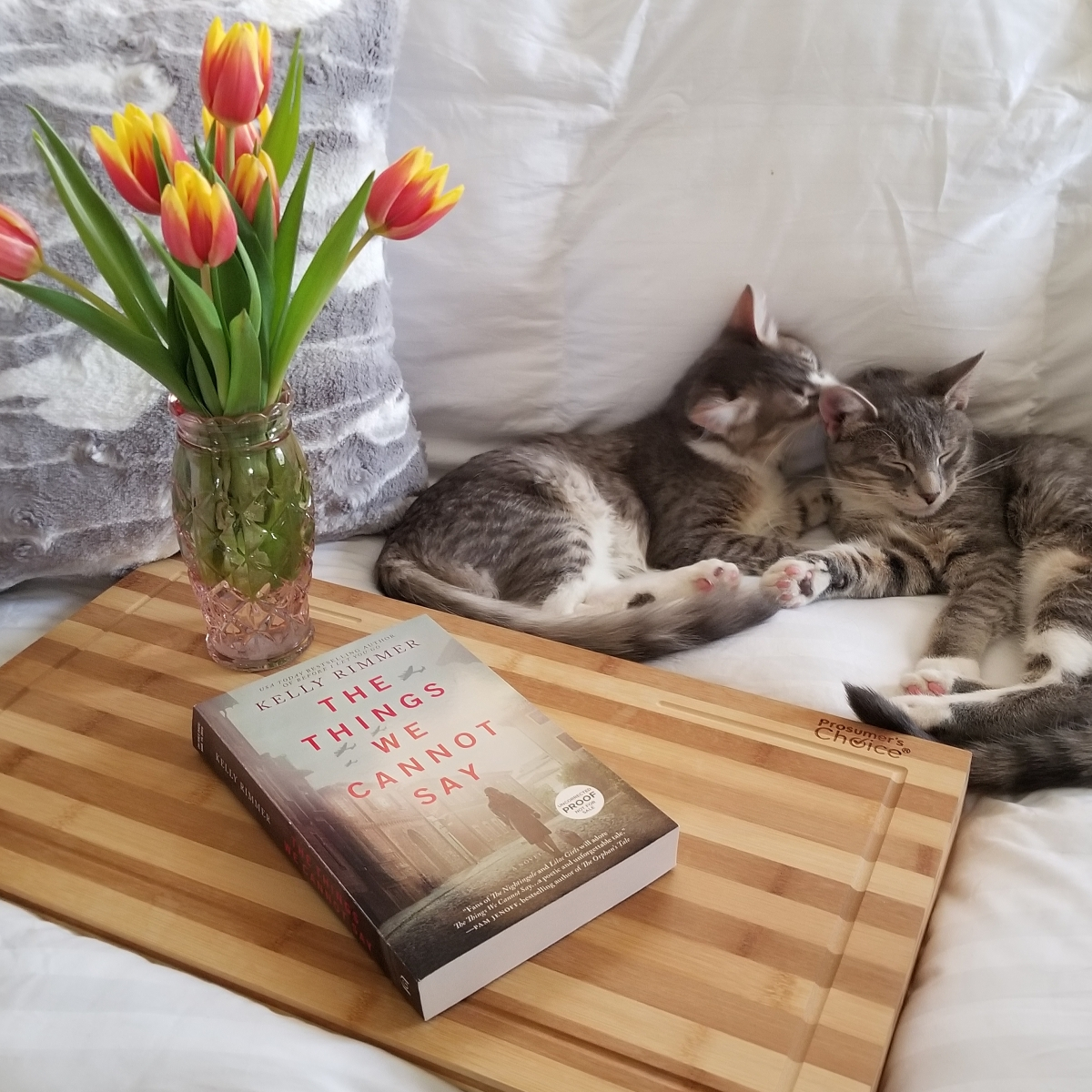Things We Cannot Say by Kelly Rimmer #bookreview #tarheelreader #thrthingswecannotsay @kelrimmerwrites @harlequinbooks #graydonhousebooks #thethingswecannotsay