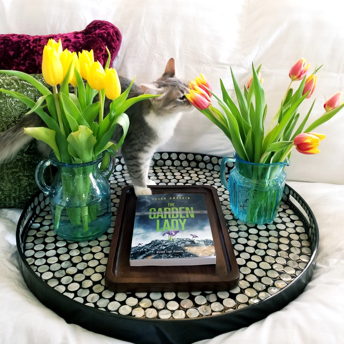 The Garden Lady by Susan Dworkin #bookreview #tarheelreader #thrgardenlady @tlcbooktours #thegardenlady #blogtour