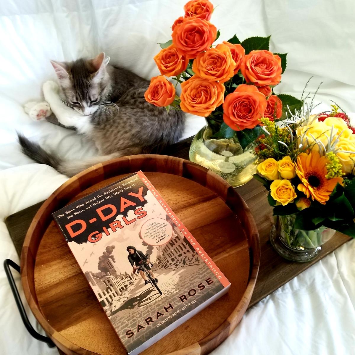 D-Day Girls by Sarah Rose #bookreview #tarheelreader #thrddaygirls @thesarahrose @crownpublishing #ddaygirls