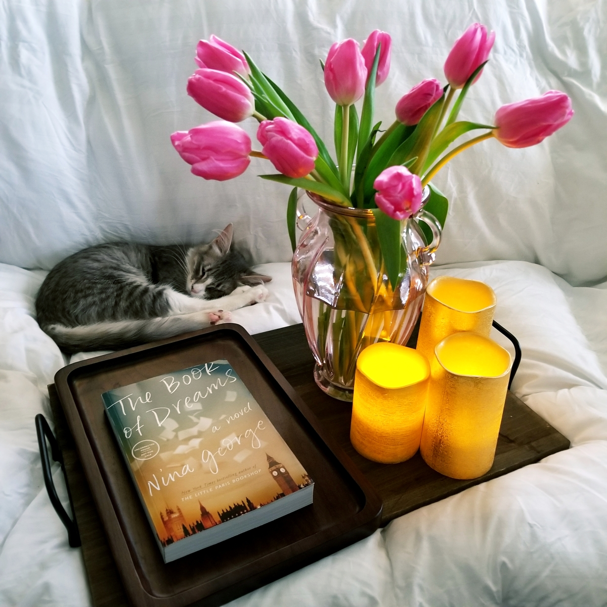 The Book of Dreams by Nina George #bookreview #tarheelreader #thrbookofdreams @nina_george @crownpublishing #thebookofdreams