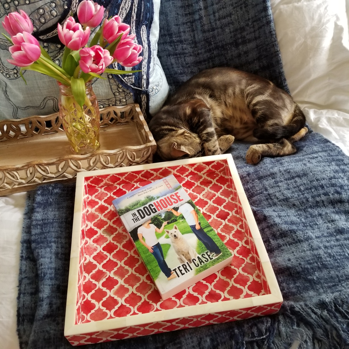 In the Dog House by Teri Case #bookreview #tarheelreader #thrinthedoghouse @tericase_author #inthedoghouse #bookgiveaway