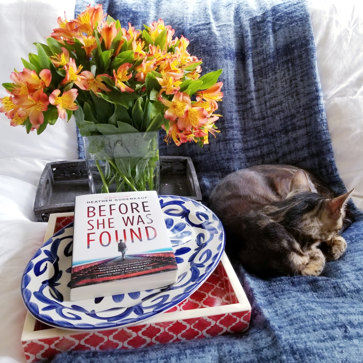 Before She Was Found by Heather Gudenkauf #bookreview #tarheelreader #thrbeforeshewas @hgudenkauf @harlequinbooks @parkrowbooks @tlcbooktours #beforeshewasfound #blogtour