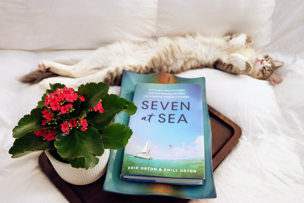 Seven at Sea by Erik Orton and Emily Orton #bookreview #tarheelreader #thrsevenatsea @erikorton @smithpublicity #sevenatsea