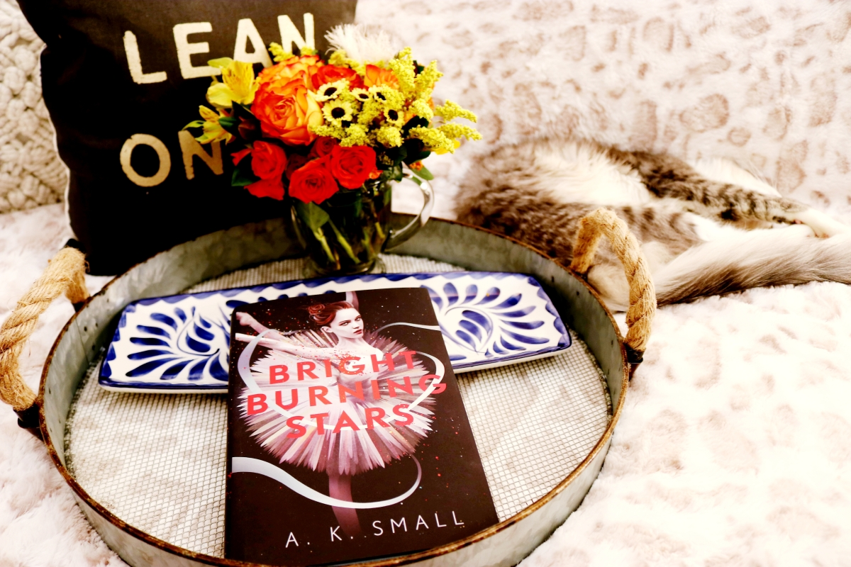 Bright Burning Stars by A.K. Small #bookreview #tarheelreader #thrbrightburning @aksmallwords @algonquinbooks @algonquinyr #brightburningstars #blogtour