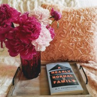 A Nearly Normal Family by M.T. Edvardsson #bookreview #tarheelreader #thrnearlynormal @mattiasedvard @celadonbooks #anearlynormalfamily