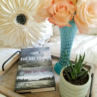 Bad Axe County by John Galligan #bookreview #tarheelreader #thrbadaxecounty #johngalligan @atriabooks #badaxecounty #blogtour