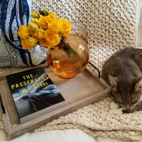 The Passengers by John Mars #bookreview #tarheelreader #thrthepassengers @johnmarrs1 @berkleypub #thepassengers #blogtour #bookgiveaway