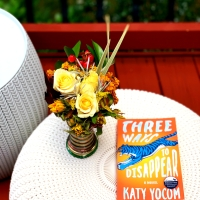 Three Ways to Disappear by Katy Yocom #bookreview #tarheelreader #thrthreewaystodisappear @katyyocom1 @ashlandpress @smithpublicity #threewaystodisappear