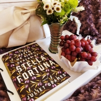 The Seven or Eight Deaths of Stella Fortuna by Juliet Grames #bookreview #tarheelreader #thrthesevenoreight @julietgrames @eccobooks #thesevenoreightdeathsofstellafortuna