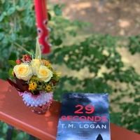 29 Seconds by T.M. Logan #bookreview #tarheelreader #thr29seconds @tmloganauthor @stmartinspress #29seconds