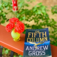 The Fifth Column by Andrew Gross #bookreview #tarheelreader #thrthefifthcolumn @the_andrewgross @minotaurbooks @stmartinspress #thefifthcolumn