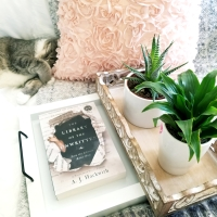 The Library of the Unwritten by A.J. Hackwith #bookreview #tarheelreader #thrlibraryunwritten @ajhackwith @berkleypub #thelibraryoftheunwritten