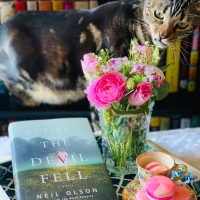 Before the Devil Fell by Neil Olson #bookreview #tarheelreader #thrbeforethedevil @hanover_square @harlequinbooks #beforethedevilfell #blogtour