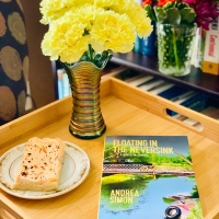 Floating in the Neversink by Andrea Simon #bookreview #tarheelreader #thrfloatingintheneversink @simonandrea19 @brwpublisher #floatingintheneversink #indielit #indielove #indiepublishing