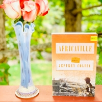 Africaville by Jeffrey Colvin #bookreview #tarheelreader #thrafricaville @amistadbooks @tlcbooktours #africaville #blogtour